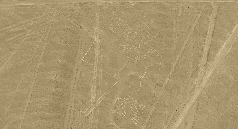 Nazca Palpa Lines Flight